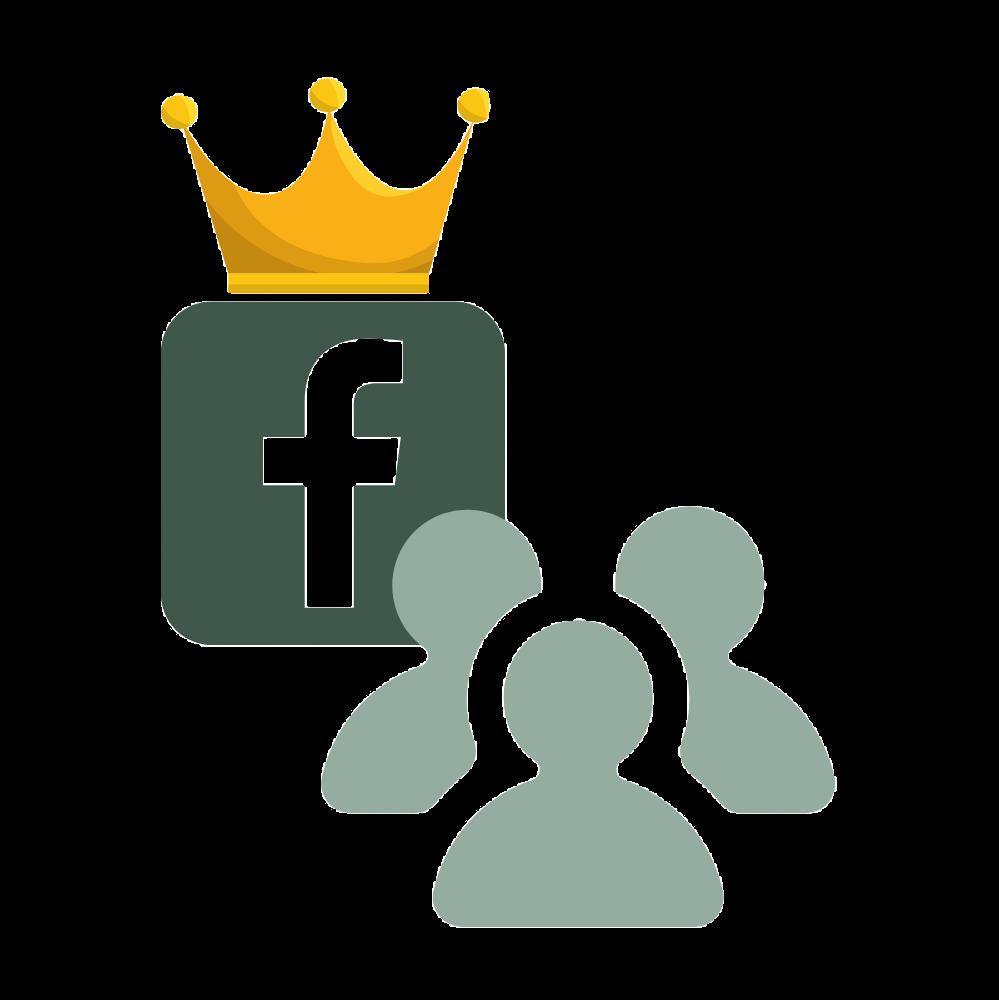 picto premium facebook